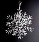 最初の雪の結晶1